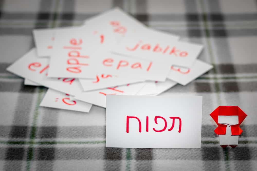 תרגום מאנגלית לעברית של מלים בתפזורת